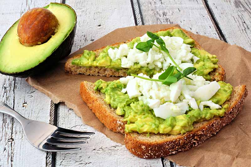Avocado On Toast With Egg Whites